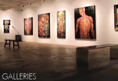 Monitory interaktywne MAXELL jako wyświetlacze dzieł sztuki i na wystawach naukowych